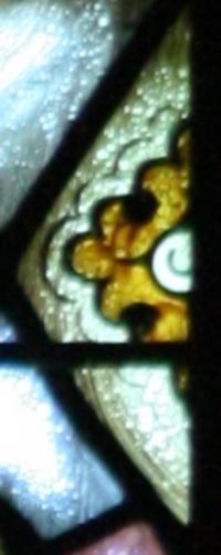 St. John the Baptist Flower Detail 2
