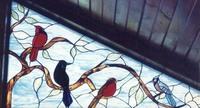 Male Cardinal, Grackle, Robin, Blue Jay